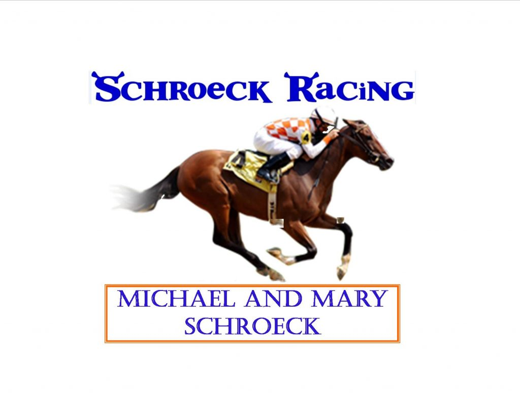 Schroeck Logo updated 2-17-16